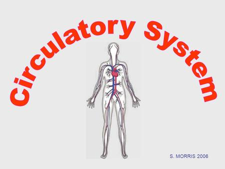 S. MORRIS 2006.  The circulatory system carries blood and dissolved substances to and from different places in the body.  The Heart has the job of pumping.