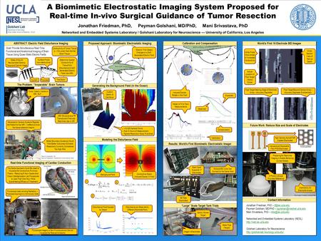 A Biomimetic Electrostatic Imaging System Proposed for Real-time In-vivo Surgical Guidance of Tumor Resection Jonathan Friedman, PhD, Peyman Golshani,