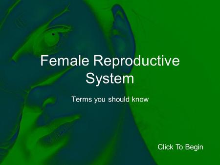Female Reproductive System Terms you should know Click To Begin.