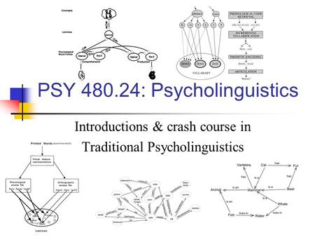 PSY 480.24: Psycholinguistics Introductions & crash course in Traditional Psycholinguistics.