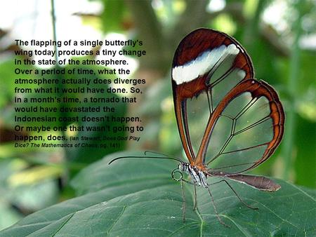 The flapping of a single butterfly's wing today produces a tiny change in the state of the atmosphere. Over a period of time, what the atmosphere actually.