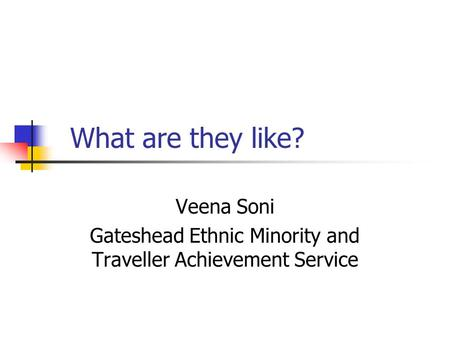 What are they like? Veena Soni Gateshead Ethnic Minority and Traveller Achievement Service.