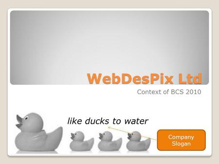 WebDesPix Ltd Context of BCS 2010 like ducks to water Company Slogan.