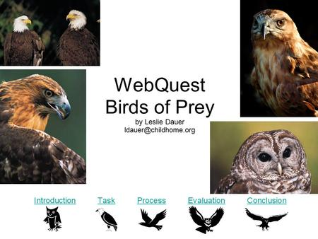 WebQuest Birds of Prey by Leslie Dauer