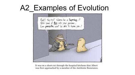 A2_Examples of Evolution. Should we use antibacterial soap?