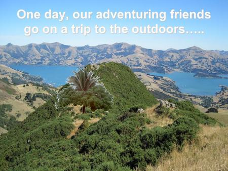 One day, our adventuring friends go on a trip to the outdoors…..