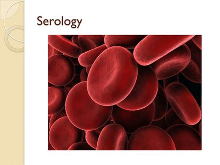Serology. Objectives You will be able to: Determine whether a stain is blood. Determine whether a bloodstain is human or animal blood. Determine the blood.