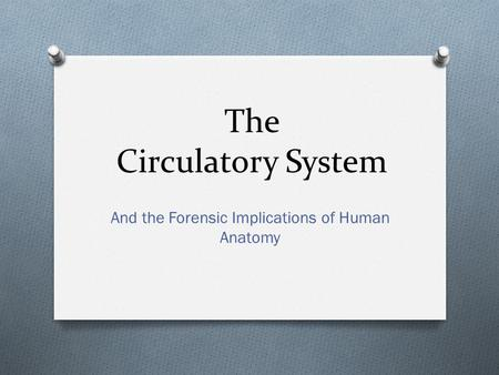 The Circulatory System And the Forensic Implications of Human Anatomy.