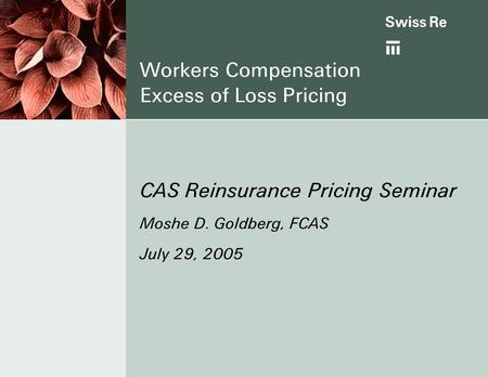 Workers Compensation Excess of Loss Pricing CAS Reinsurance Pricing Seminar Moshe D. Goldberg, FCAS July 29, 2005.