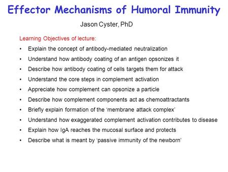 Effector Mechanisms of Humoral Immunity Learning Objectives of lecture: Explain the concept of antibody-mediated neutralization Understand how antibody.