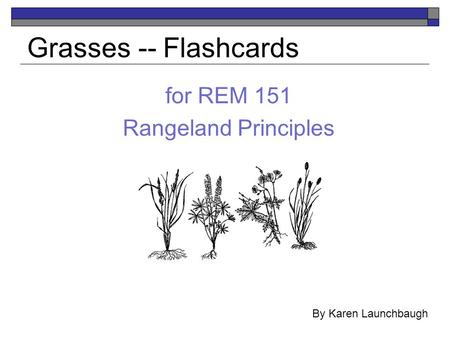 For REM 151 Rangeland Principles Grasses -- Flashcards By Karen Launchbaugh.