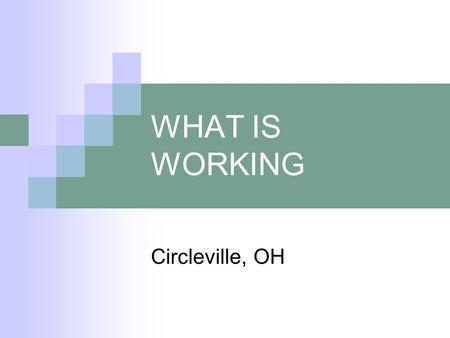 WHAT IS WORKING Circleville, OH. WHAT IS WORKING Sharing Information & Resources Between MH & VR Continued Follow-Up With Consumer & Employer Seek Grant.