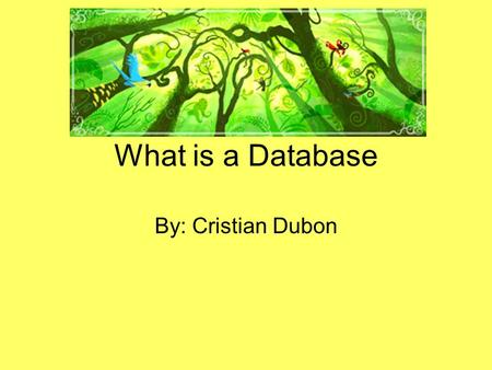 What is a Database By: Cristian Dubon.