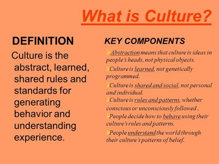 What is Culture? DEFINITION