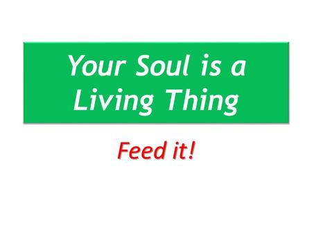 Your Soul is a Living Thing Feed it!. All Your Soul Deuteronomy 4:29 Deuteronomy 6:5 Deuteronomy 10:12 Deuteronomy 11:13 Deuteronomy 13:3 Deuteronomy.