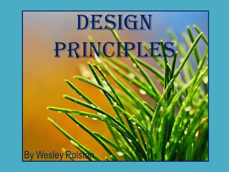 Design Principles By Wesley Rolston. Five Design Principles Proximity alignment Repetition Balance Contrast.