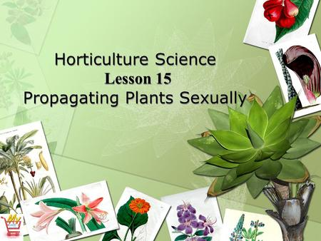 Horticulture Science Lesson 15 Propagating Plants Sexually.