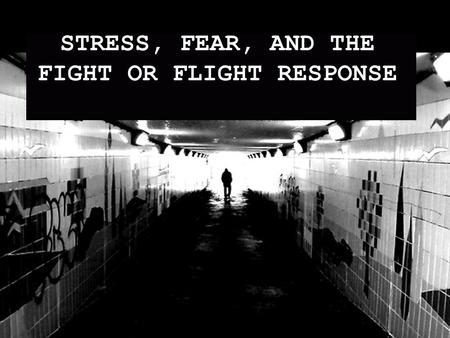 STRESS, FEAR, AND THE FIGHT OR FLIGHT RESPONSE. FIGHT OR FLIGHT OVERVIEW AMYGDALA HYPOTHALAMUS PITUITARY GLAND ADRENAL GLAND THROUGHOUT BODY.