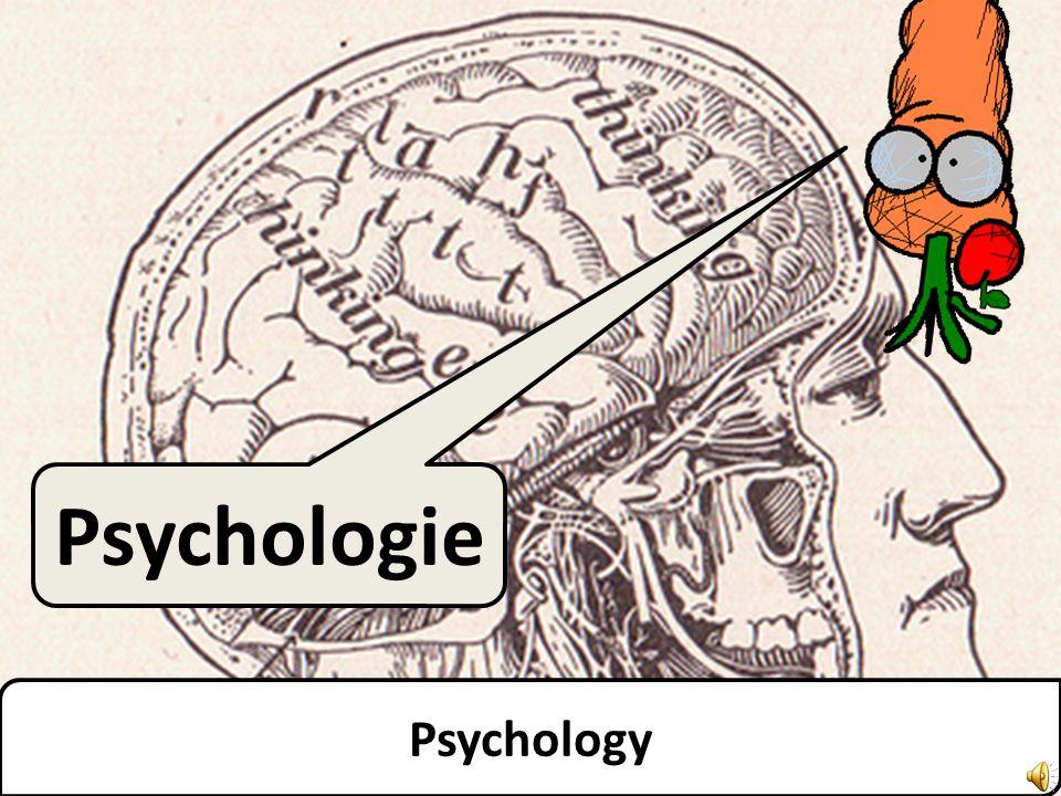 Psychologie Psychology