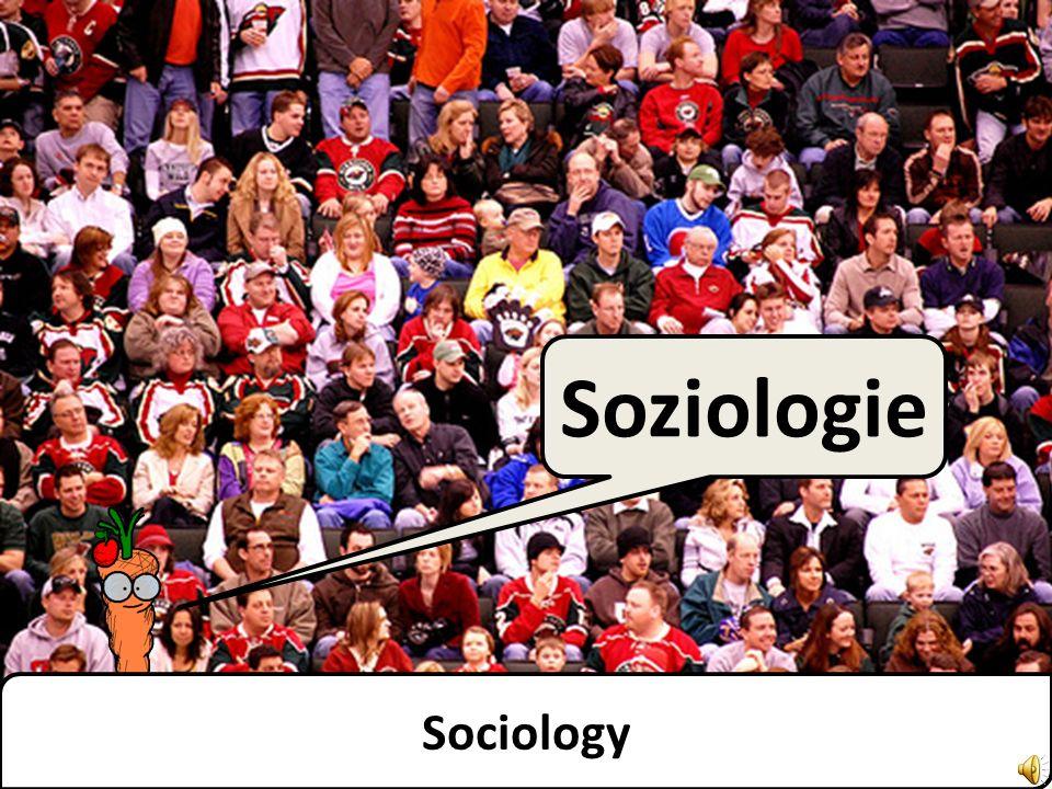 Soziologie Sociology