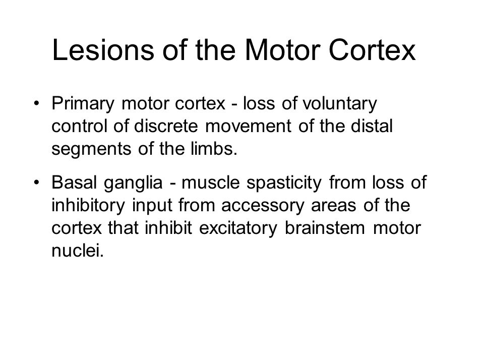 somatic motor pathways ppt download