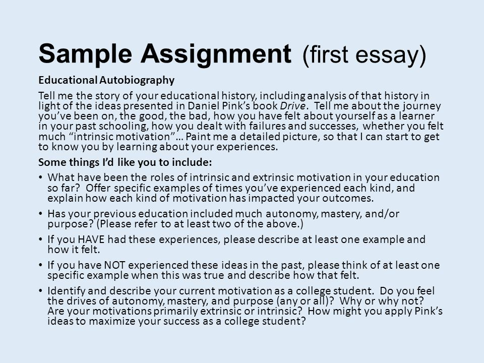 sampling assignment