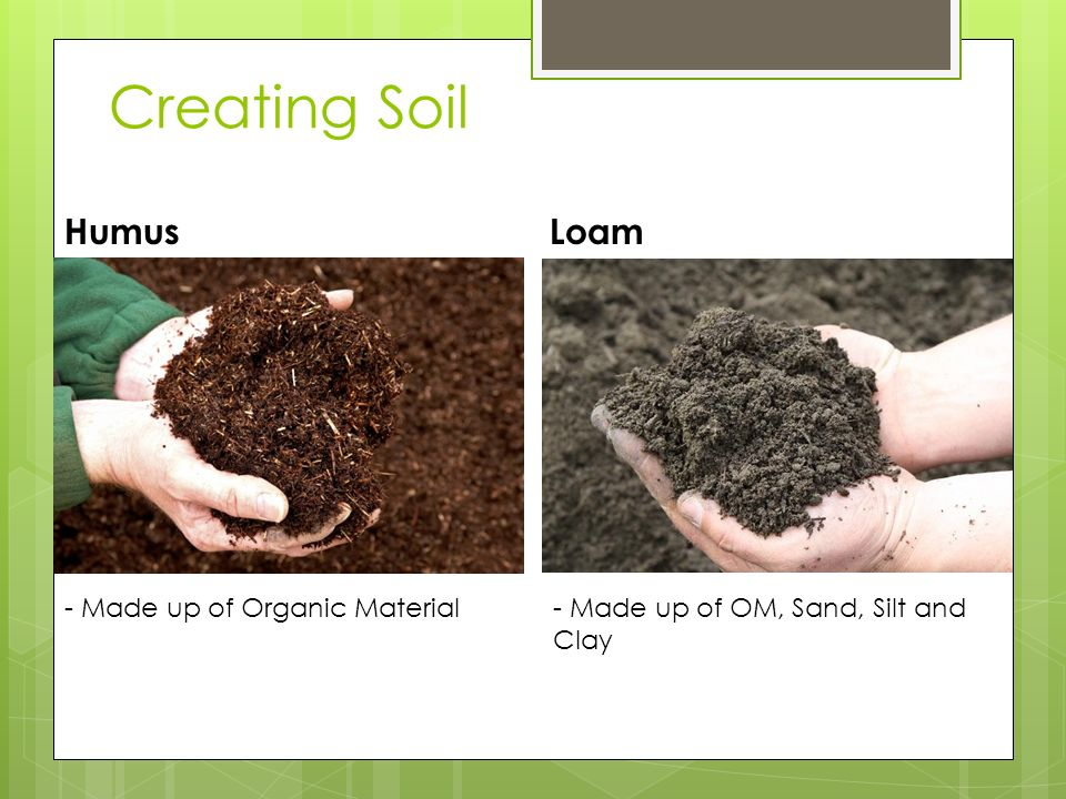 Creating soil through composting ppt download for What 5 materials make up soil