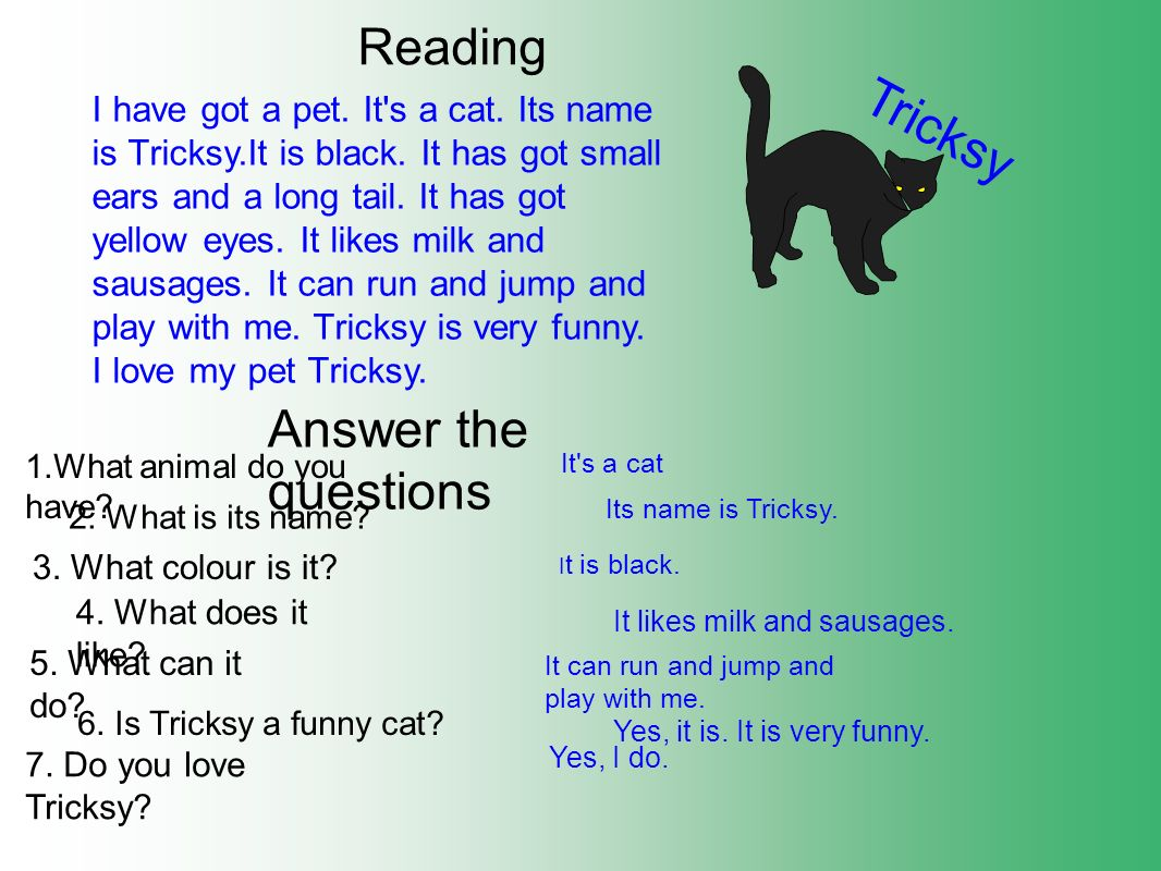 Tricksy Answer the questions Reading