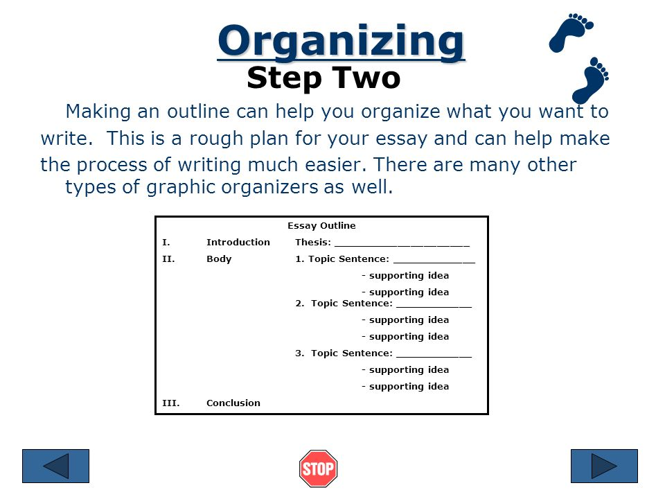 steps in writing an essay ppt  4 organizing