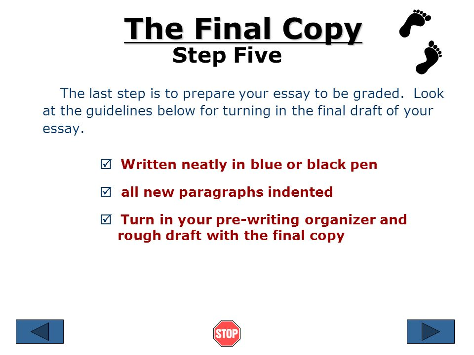 Steps Of Writing Essay