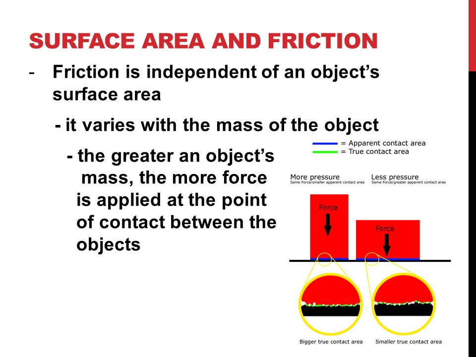 relationship between friction and contact area