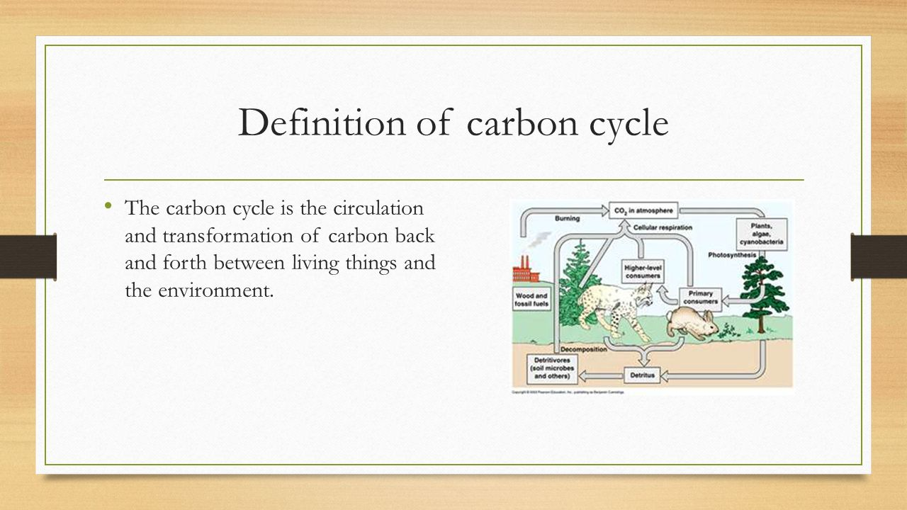 Carbon dating simple definition
