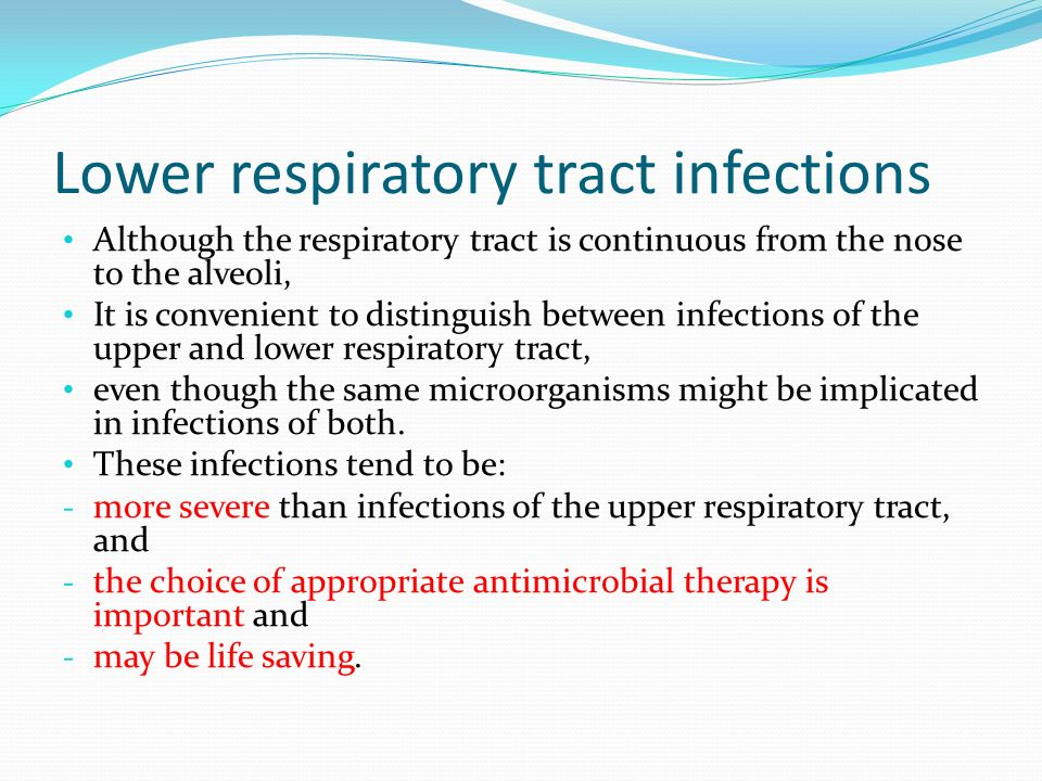 how to treat respiratory tract infections The respiratory tract of these patients is usually colonised with one or more of the recognised respiratory tract pathogens, streptococcus pneumoniae, haemophilus influenzae, and moraxella catarrhalis although these organisms can cause infections, a positive sputum culture in isolation is not an indication for commencing therapy.
