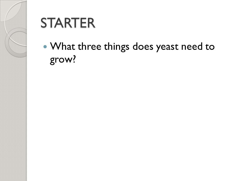 STARTER What three things does yeast need to grow? - ppt video online  download