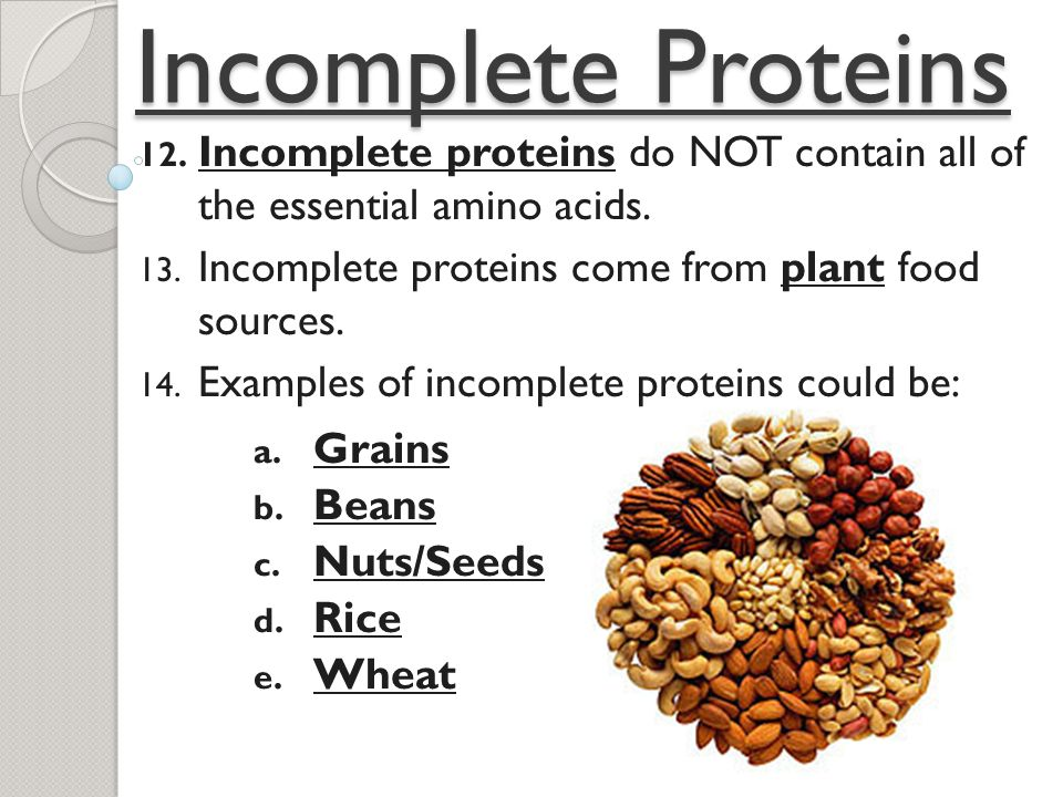 What Food Sources Contain Protein