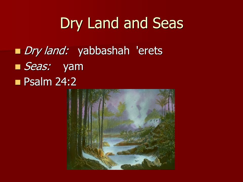Dry Land and Seas Dry land: yabbashah erets Seas: yam Psalm 24:2