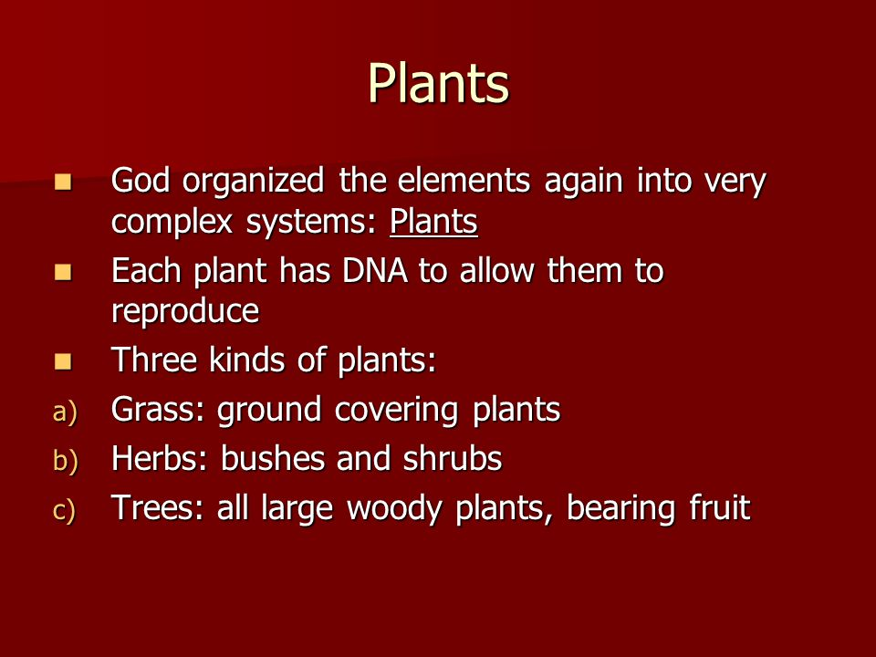 Plants God organized the elements again into very complex systems: Plants. Each plant has DNA to allow them to reproduce.