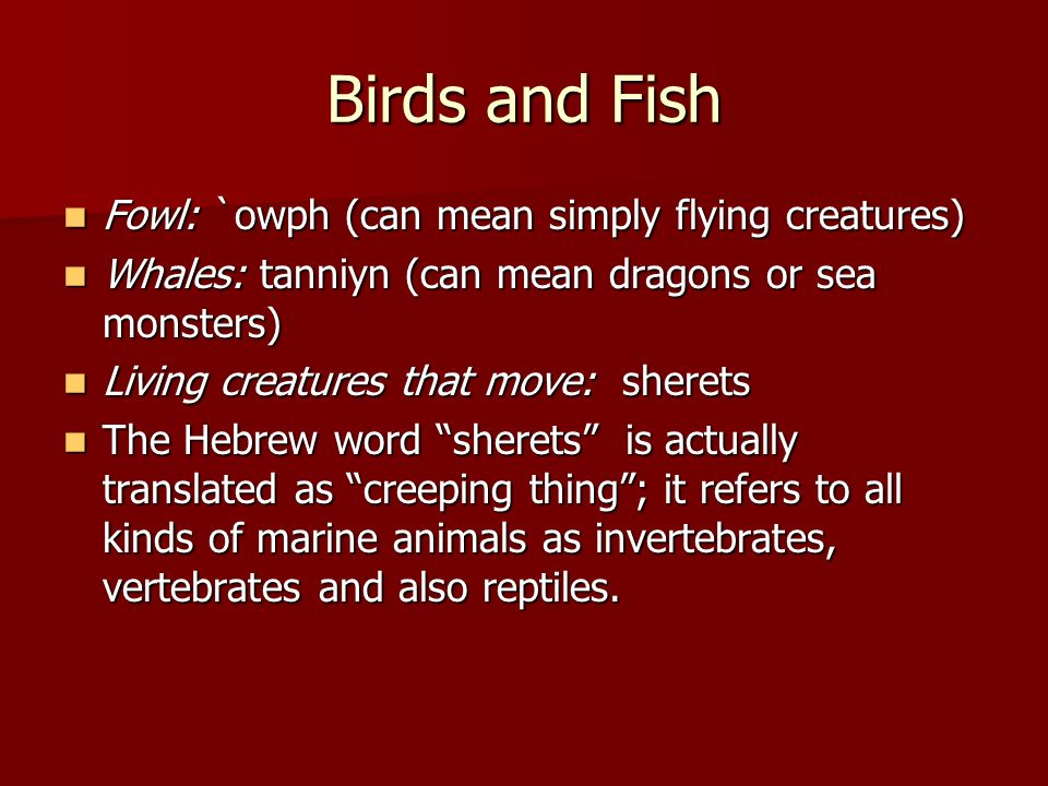 Birds and Fish Fowl: `owph (can mean simply flying creatures)
