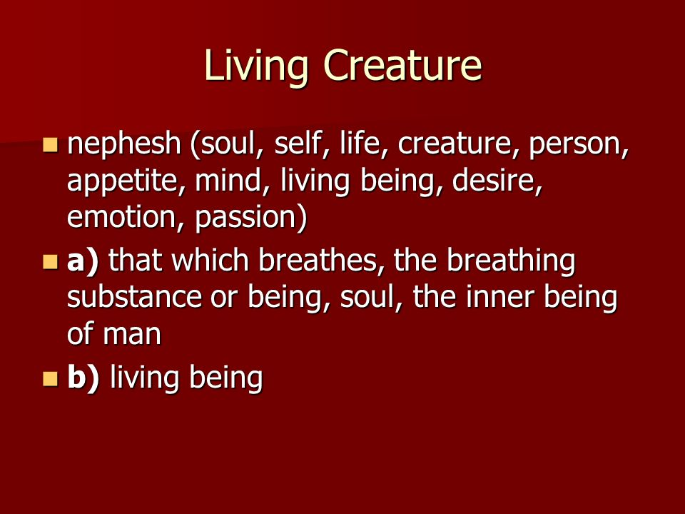 Living Creature nephesh (soul, self, life, creature, person, appetite, mind, living being, desire, emotion, passion)