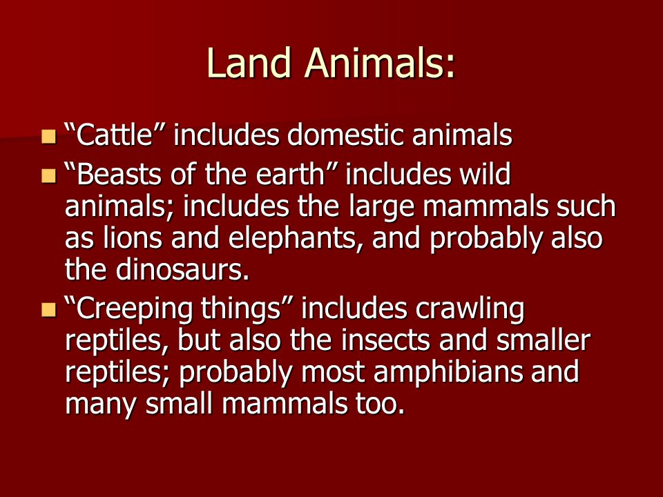 Land Animals: Cattle includes domestic animals