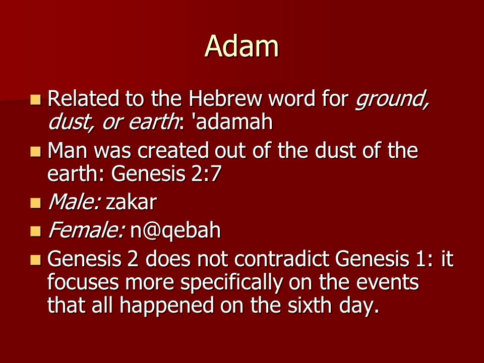Adam Related to the Hebrew word for ground, dust, or earth: adamah