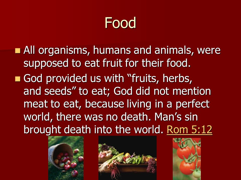 Food All organisms, humans and animals, were supposed to eat fruit for their food.