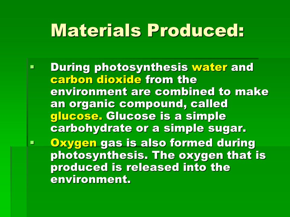 oxygen production during photosynthesis Photosynthesis is the process by which plants use light energy to reduce carbon   the only pigment present in all oxygen producing phytoplankton is chl-a and .