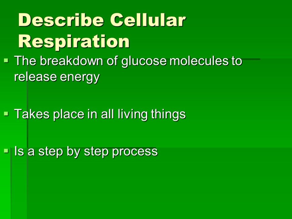describe photosynthesis A brief outline of various ways to measure the rate of photosynthesis - including measuring photosynthesis via the uptake of carbon dioxide (eg using immobilised algae), via the production.