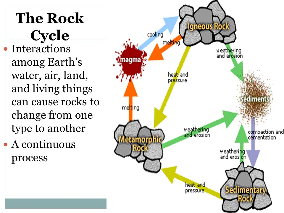 rock cycle diagram prentice hall gallery how to guide and refrence. Black Bedroom Furniture Sets. Home Design Ideas