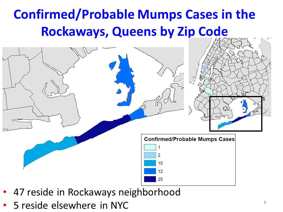 New York City Department Of Health And Mental Hygiene Ppt Download - Queens zip code