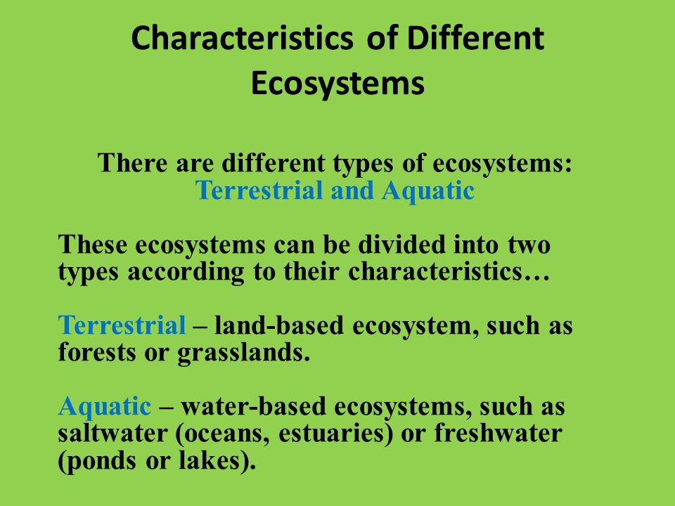 Ecosystems ppt video online download for Different types of soil and their characteristics