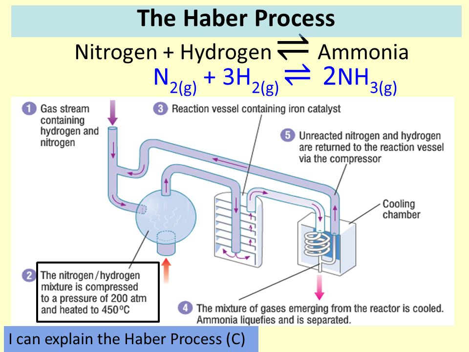 Write down everything you can think of about this reaction ppt 5 nitrogen hydrogen ammonia the haber process ccuart Image collections