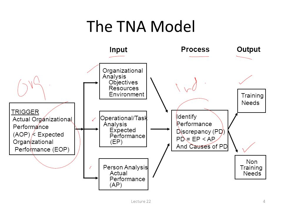 an analysis of the nature of the teambuilding process This has been applied to research on hazing and initiation rituals to examine how the process of initiation for sport teams place the group in an unfamiliar state, to which group development is unpredictable, and can result in various outcomes dependent on the individual and the leadership of the team.