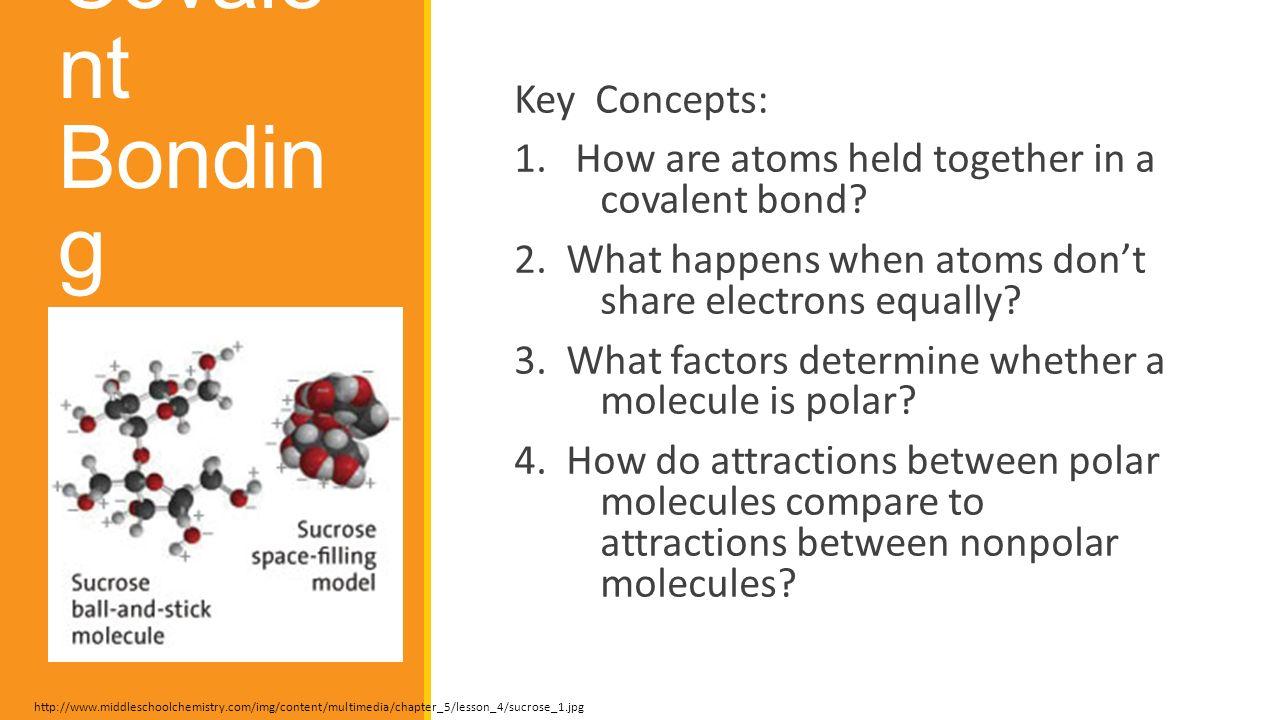 6.2 Covalent Bonding Key Concepts: - ppt video online download